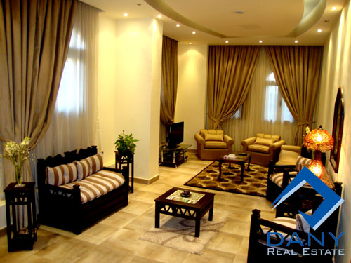 Residential Ground Floor Apartment For Rent Furnished in Maadi Digla Great Cairo Egypt