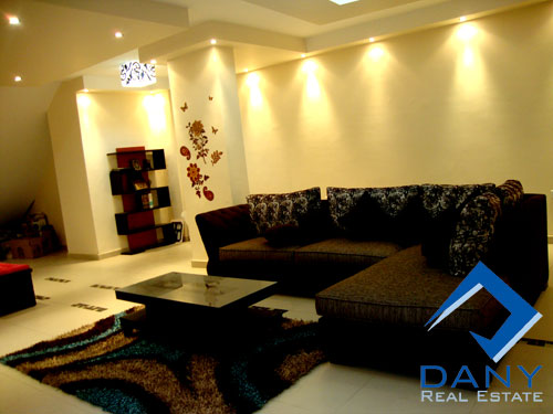Residential Duplex For Rent Furnished in Maadi Digla Great Cairo Egypt